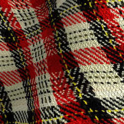 #SP49 SCOTTISH FABRIC
